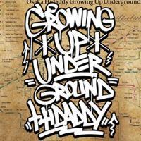 HIDADDY「GROWING UP UNDERGROUND」完全生産限定CD