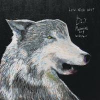 LOW HIGH WHO?「D.I.Y. - Memories and Winter -」CD