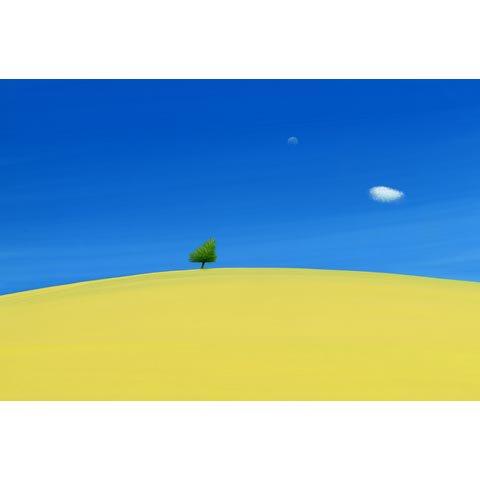 アートグラフ【ASOの黄色い大地】太子サイズ