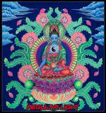 <img class='new_mark_img1' src='https://img.shop-pro.jp/img/new/icons16.gif' style='border:none;display:inline;margin:0px;padding:0px;width:auto;' />【SPACETRIBE】UV BANNER JUNGLY BUDDHA