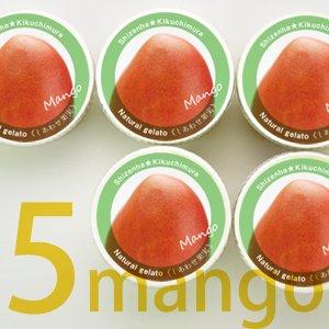 無添加ジェラート「しあわせ果実 マンゴー」60ml×5個