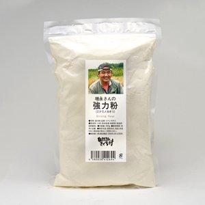 農薬不使用・自然栽培 増永光俊さんの強力粉【ミナミノカオリ】500g