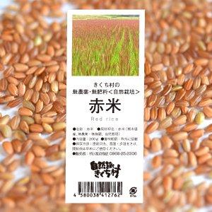 きくち村の赤米(もち米) 200g(農薬不使用歴3年・自然栽培歴3年)