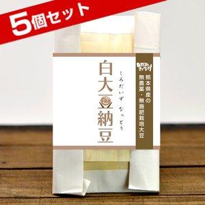 きくち村の白大豆納豆(熊本県産・自然栽培・フクユタカ大豆使用)100g×5個セット【冷凍】