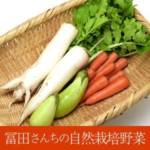 冨田さんちの自然栽培野菜セット【3品】 8/27(火) 発送分