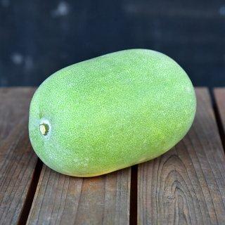 上野さんの冬瓜(自然栽培)1玉 約600〜800g