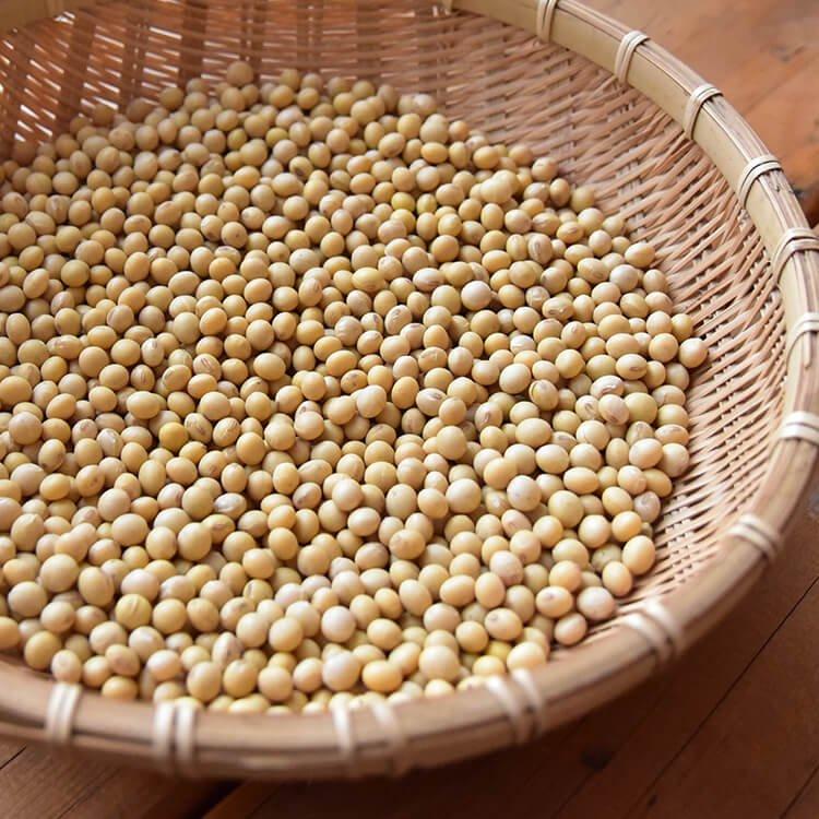 中島さんの大豆(フクユタカ/農薬不使用・自然栽培)500g