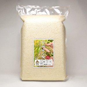 【令和2年度産】安藤安心米(ヒノヒカリ)3年目物 5kg( 農薬不使用歴14年・自然栽培歴3年)