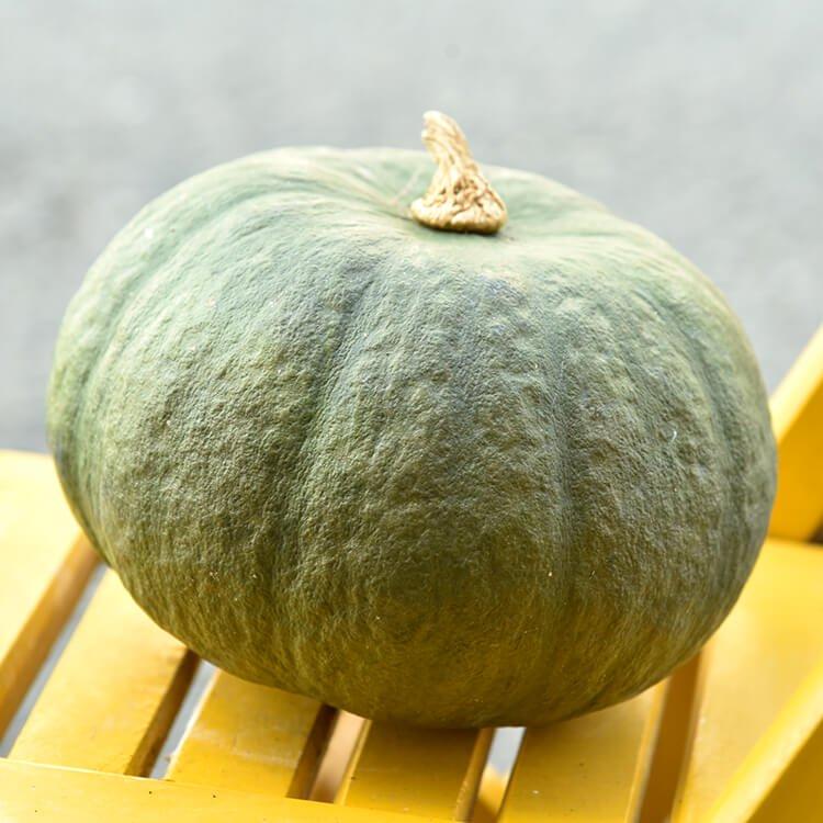 ひろふみ農園の東京かぼちゃ(無農薬・無化学肥料栽培) 1玉(約1.2kg〜1.5kg)