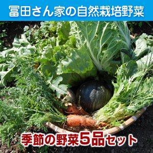 冨田さんちの自然栽培野菜セット【5品】 10/25(金) 発送分