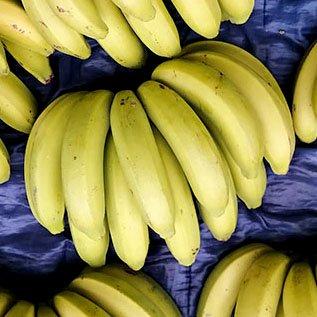 宝島の冷凍完熟バナナ(自然栽培) 500g【冷凍】