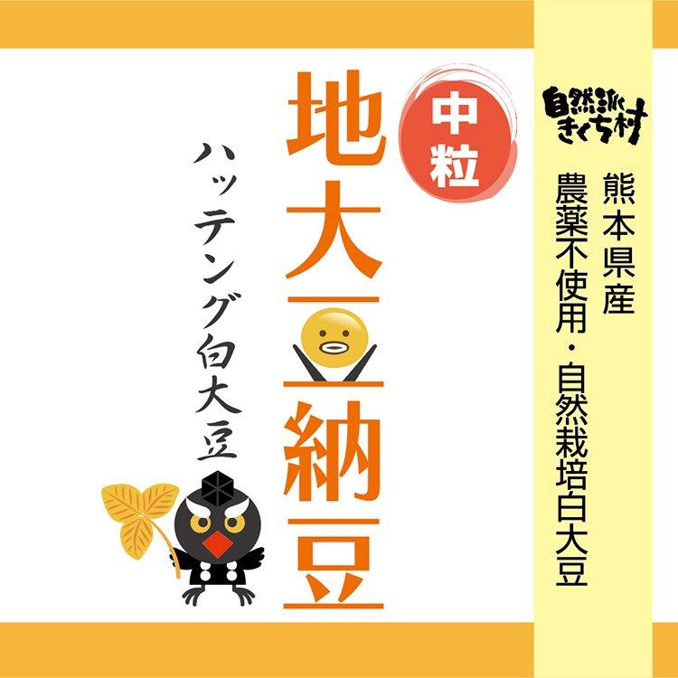 ハッテング地大豆納豆【中粒】100g単品(自然栽培)【冷凍】