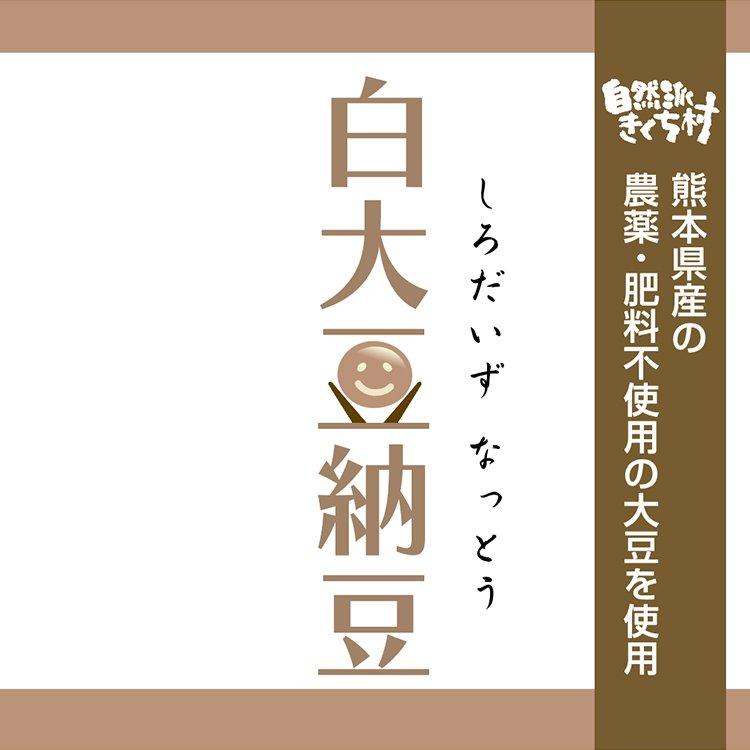 きくち村の白大豆納豆_100g単品(自然栽培・フクユタカ大豆使用)【冷凍】