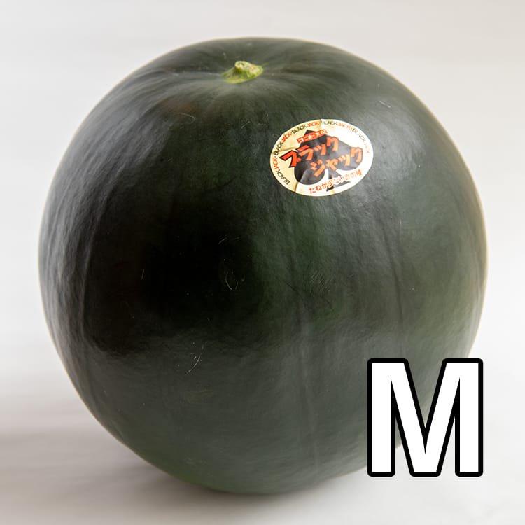 【予約販売・送料込み】うちだファームのスイカ:ブラックジャックM玉:約5kg(減農薬:熊本県植木産)