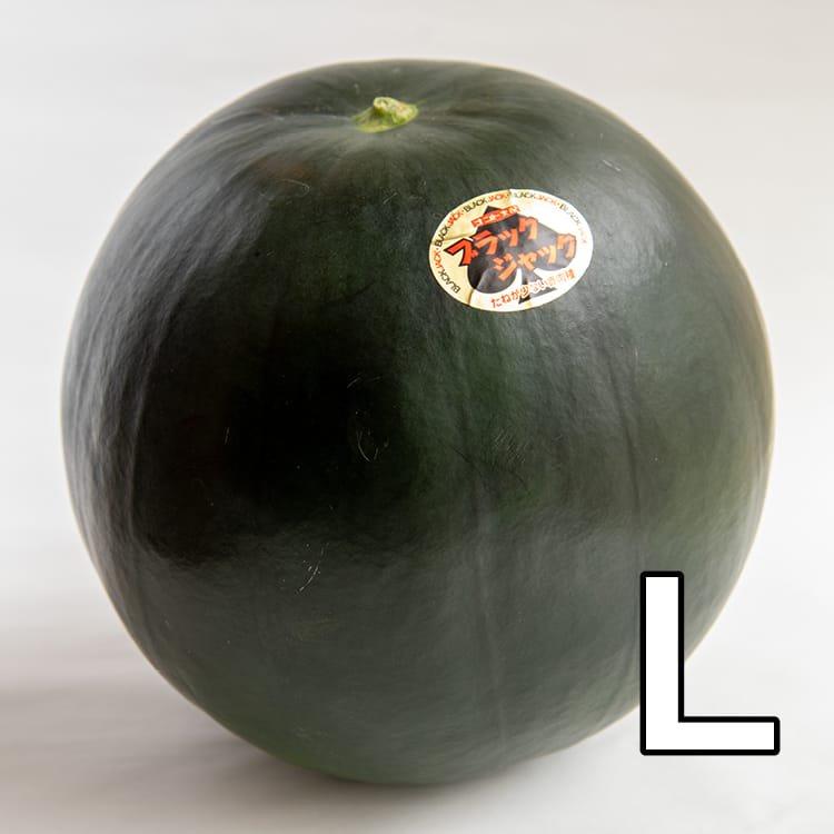 【予約販売・送料込み】うちだファームのスイカ:ブラックジャックL玉:約6kg(減農薬:熊本県植木産)