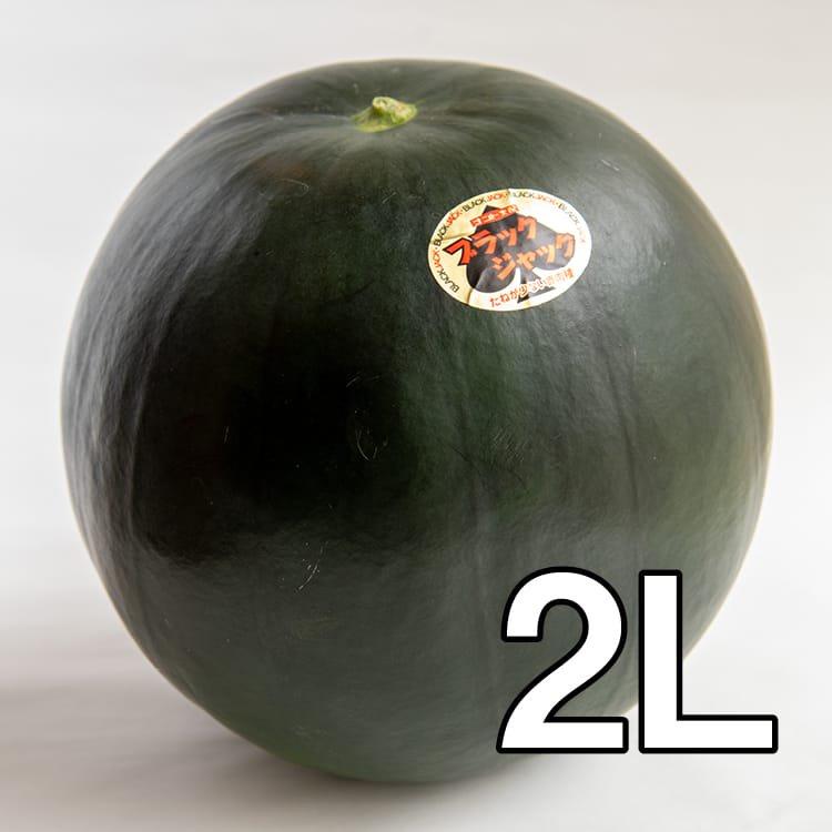 【予約販売・送料込み】うちだファームのスイカ:ブラックジャック2L玉:約7kg(減農薬:熊本県植木産)