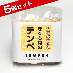 きくち村のテンペ 100g×5個セット【冷凍】(熊本産農薬不使用大豆使用・マクロビオティック食品)