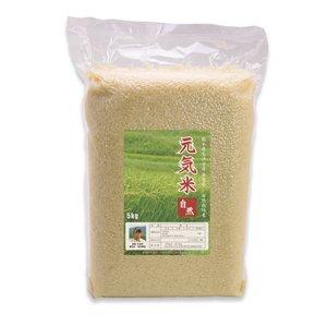 新米【30年度産】元気米:自然(ヒノヒカリ) 5kg(農薬不使用歴17年・自然栽培歴9年)