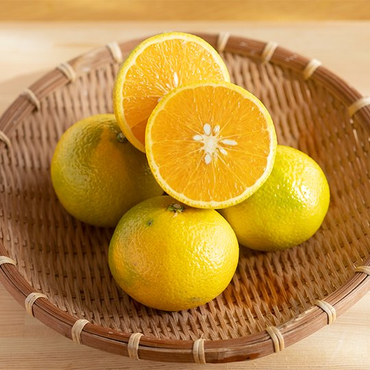 山本さんのスイートスプリング 1kg(農薬不使用・無施肥の自然栽培)