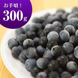 城さんの冷凍ブルーベリー(農薬不使用・無化学肥料栽培)300g【冷凍】