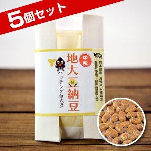 ハッテング地大豆納豆【中粒】100g×5個セット(自然栽培)【冷凍】