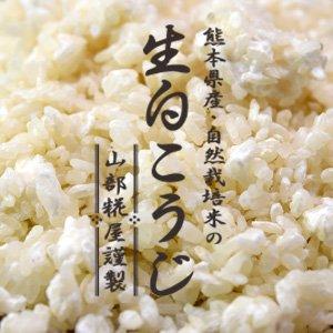 山部糀屋の生白こうじ【冷凍】 500g( 熊本県産・自然栽培米使用)