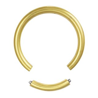 ゴールド ステンレス製 2G セグメントリング ボディピアス