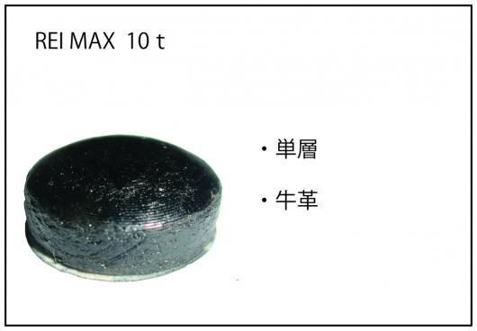 REI MAX 10t