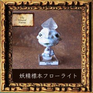 鉱物妖精標本イリノイ・フローライトの妖精(The Mineral Fairies)