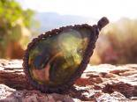 《天然石ペンダント》ウェーベライト(Wavellite) ・ワーベライト アーカンソー産4