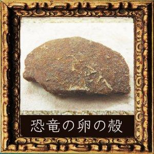 恐竜のタマゴの殻の化石2