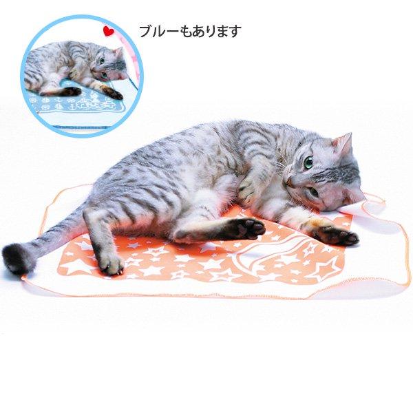 猫用 またたびシート・おもちゃ