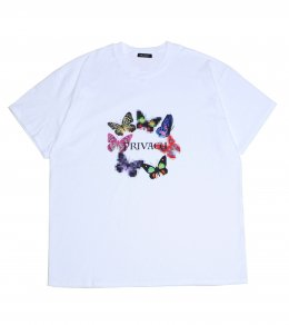 Privacy TEE