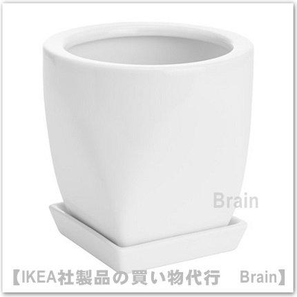 PEPPARMIX:植木鉢 受け皿付11�(ホワイト)
