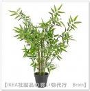 FEJKA:人工観葉植物63 cm(竹)