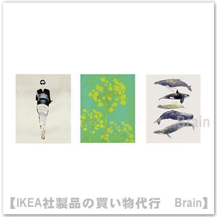 TRILLING:ポスター3点セット/40x50 cm(...