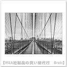 BILD:ポスター70x50 cm(ブルックリン・ブリッジの散歩)