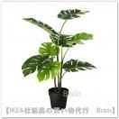FEJKA:人工観葉植物90 cm(モンステラ)