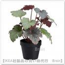 FEJKA:人工観葉植物29 cm(ヒューケラ)