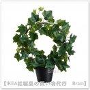 FEJKA:人工観葉植物40 cm(ヘデラ ツル仕立て)