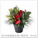 <img class='new_mark_img1' src='https://img.shop-pro.jp/img/new/icons8.gif' style='border:none;display:inline;margin:0px;padding:0px;width:auto;' />FEJKA:人工観葉植物27 cm(アレンジメント レッド)