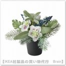 <img class='new_mark_img1' src='https://img.shop-pro.jp/img/new/icons8.gif' style='border:none;display:inline;margin:0px;padding:0px;width:auto;' />FEJKA:人工観葉植物21 cm(アレンジメント ホワイト)