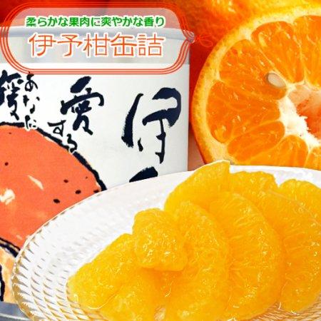 伊予柑 缶詰