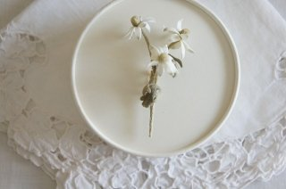 <img class='new_mark_img1' src='https://img.shop-pro.jp/img/new/icons47.gif' style='border:none;display:inline;margin:0px;padding:0px;width:auto;' />Corsage / Flannel flower