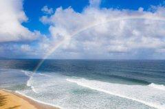 - Rainbow Skywalker -オーダープリント