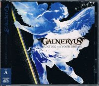 GALNERYUS/HUNTING FOR YOUR DREAM