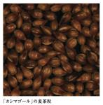令和3年産「カシマゴール」麦茶用六条大麦(うるち麦)種子 1kg