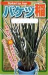 バケツ稲用種もみ(色米・特殊米)