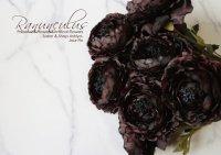 【Ranunculus】ラナンキュラス:ブラックブラウン