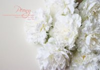 【Peony】ピオニーピック:ホワイト<img class='new_mark_img2' src='//img.shop-pro.jp/img/new/icons13.gif' style='border:none;display:inline;margin:0px;padding:0px;width:auto;' />